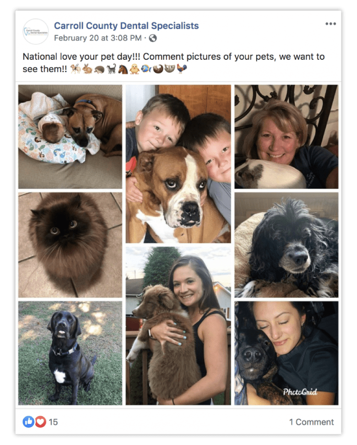 This is a collage of dental professionals with their pets